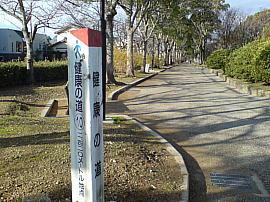 Ushikawakenkounomichi00s