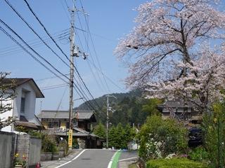 25higashiohmi31s
