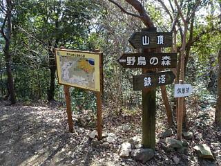 Kichijousan290121_07s