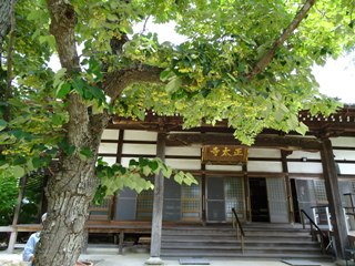 Ushikawasyoutaiji30060218s