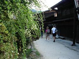 Tsumagohagi010s