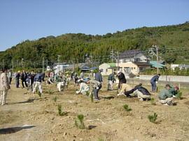 syokujusai-nishiura17-032s
