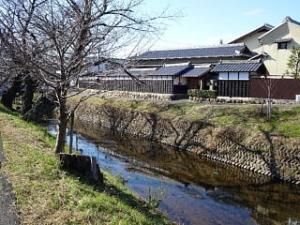 07imoshima02s